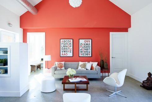 coral accent wall!