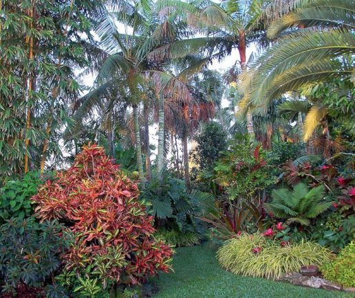 15+ Beautiful Tropical Front Yard Landscape Ideas Para tornar sua casa mais impressionante / FresHOUZ.com   – Jardines