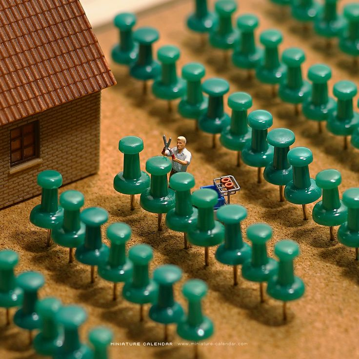Thumbtack Garden II.More Pins Like This One At FOSTERGINGER @ PINTEREST No Pin Limitsでこのようなピンがいっぱいになるピンの限界