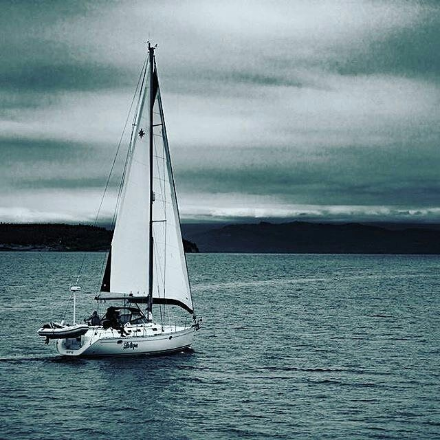 Reposting @danishkhan8846: Sailboat races in #Coupeville, #sailing #photography #500pxrtg #workfromhomemom ##Clickythemoneymakingleftthumb