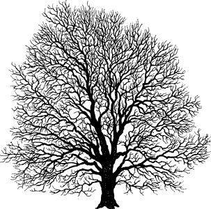 psx stamps tree - Google Search