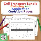 Cell Transport Coloring Activity Bundle: Membrane Structure, Osmosis, Diffusion, Facilitated Diffusion, Active Transport, and Endocytosis/Exocytosis.  Each process has a coloring page and thought provoking questions to help your students really understand what is going on!