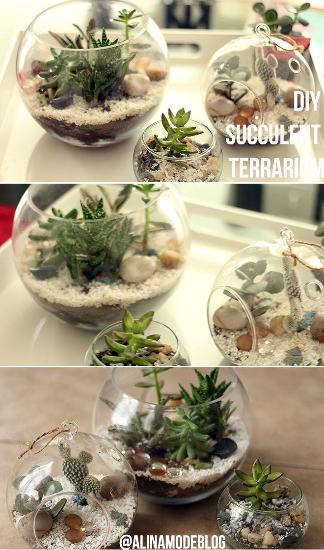 How to make a succulent and Cacti terrarium in a fishbowl. / Cómo hacer un terrario de suculentas y cactus en una pecera. DIY