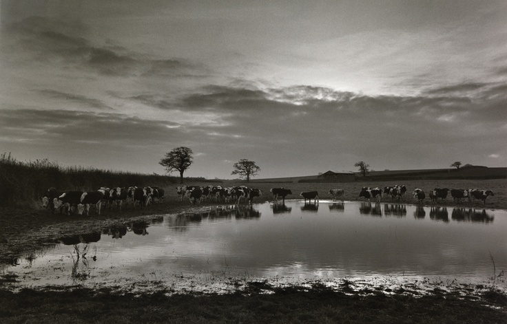 Don McCullin landscape
