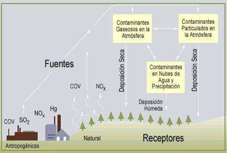 Resultado de imagen para lluvia acida consecuencias esquemas