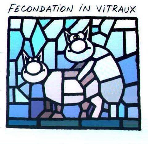 Fécondation in vitraux