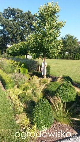 DuŻy ogrÓd małej ogrodniczki 1