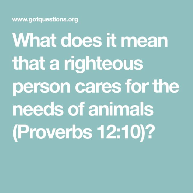 What does it mean that a righteous person cares for the needs of animals (Proverbs 12:10)?