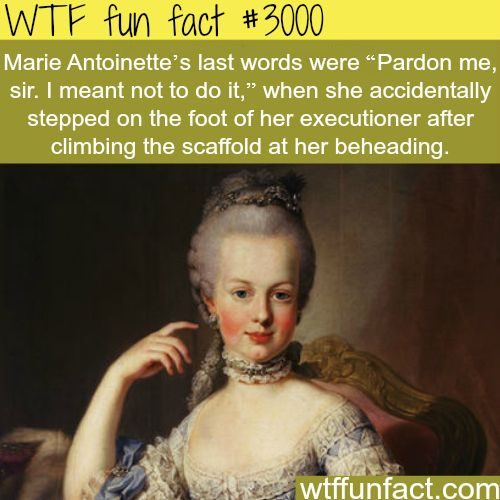 """Marie Antoinette's last words - """"Pardon me, sir. I meant not to do it."""" When she accidentally stepped on the foot of her executioner after climbing the scaffold at her beheading."""