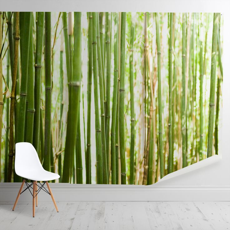 'Bamboo II' Mural - Nic Miller from £60 per sq/m   Shop Window Films & Wall Murals at surfaceview.co.uk