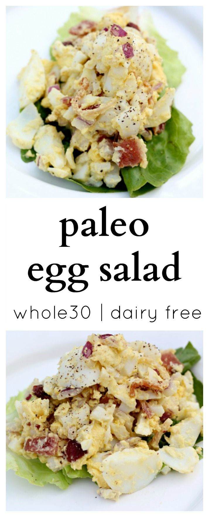 Perfect make ahead recipe for the busy Paleo eater! This recipe takes no time and the homemade mayo is so delicious and quick to make.