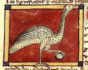 Medieval Bestiary : Crane Gallery