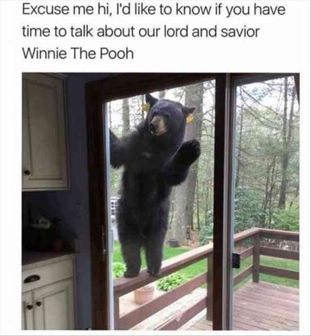 Piglet, Winnie the Pooh, Bear, Meme, 9GAG Meme: Excuse me hi, I'd like to know if you have time to talk about our lord and savior Winnie The Pooh