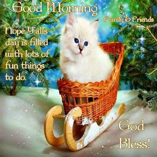 Good morning, God Bless.