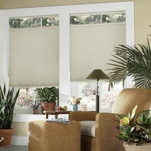 cordless top down bottom up cellular shades 65