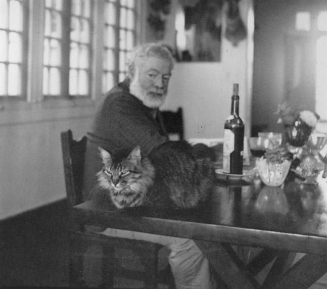 Ernest Hemingway with his cat, Cristobal, at his home, Finca Vigia, San