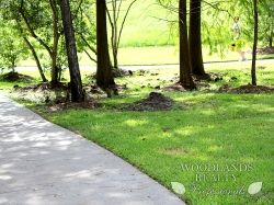 A person jogs through the walkways created in the park - Gallery - Woodlands Realty Pros