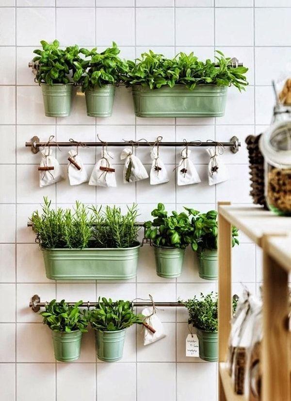 Jardín vertical con plantas aromáticas