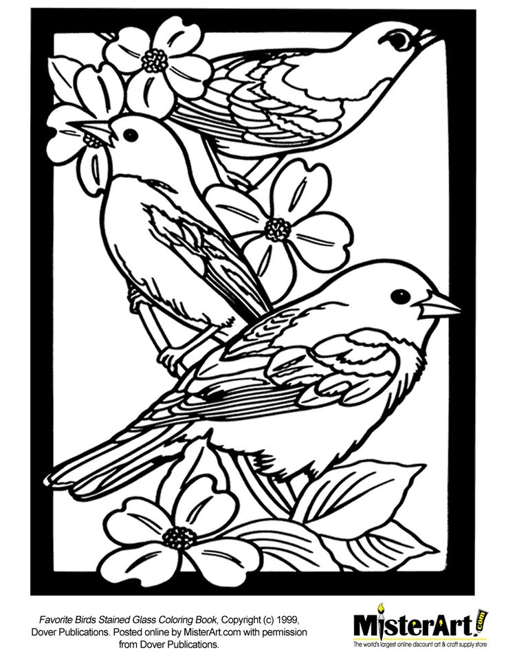 96 best Coloring Pages Line Drawings - Birds images on Pinterest - copy northern mockingbird coloring pages