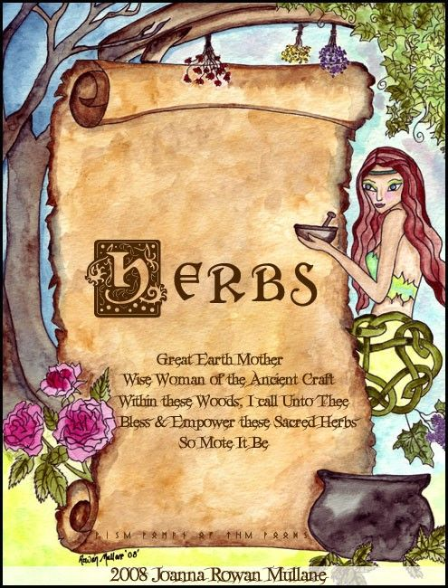 Book Of Shadows Cover Ideas : Herbs divider page book of shadows bos pagan art study