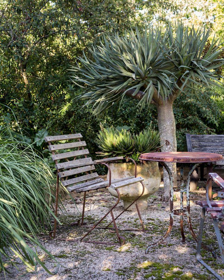 Landscape designer Michael Cooke's garden on the Central Coast of NSW.