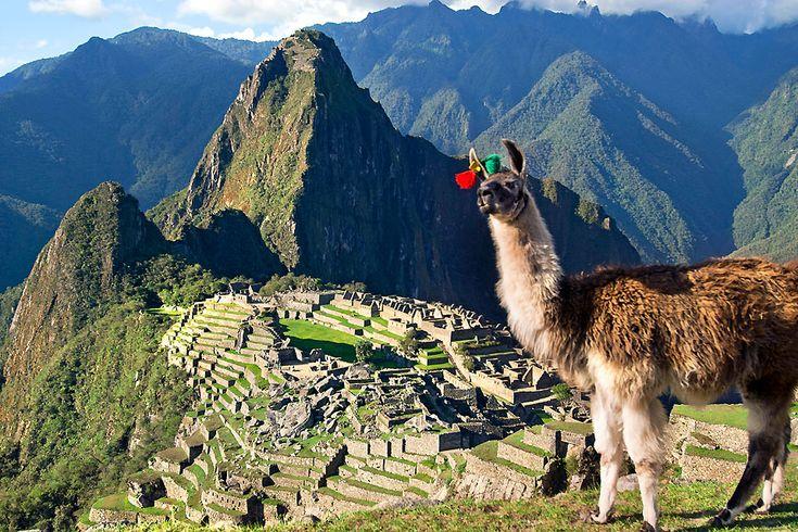 8 coisas que você precisa saber antes de ir para Machu Picchu