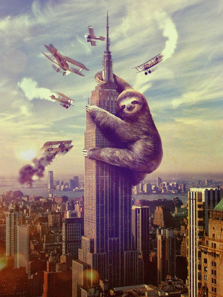 Sloth King Kong Poster Wallpaper 1536x2048 Wallpaper