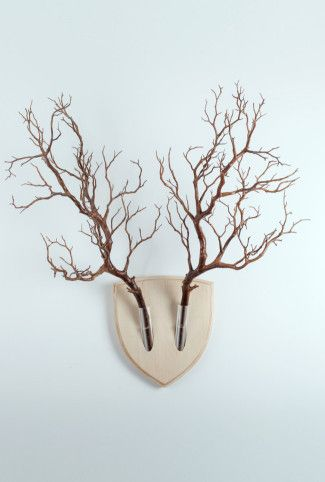 Wooden Wall Trophy