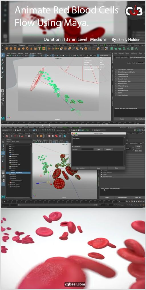 Animate Red Blood Cell Flow using Maya:Medical Animation