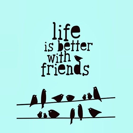 Who are your best friends? Tag them to let them know how much you care  #friends #friendquote #myfriends #friend #bestfriend #bf #bff #bffs #lovely #loveyou #love #tag #tagsforlikes #tagsomeone #quote #quotes #instagramers #instalike #followmenow #follow #followforfollow #follow4follow #amazing #cool #instamood