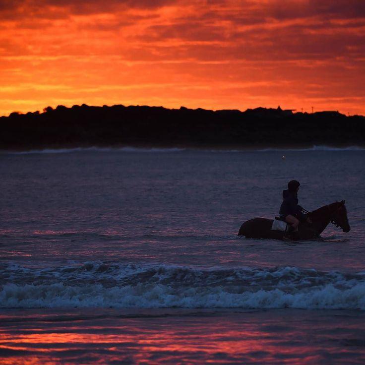 """Feierabend - auch für Pferde! Nach einem aufregenden Tag beim """"Warrnambool Racing Carnival"""" in Australien gönnt diese Frau ihrem Pferd ein kühles Bad im Meer von Lady Bay Beach.  #warrnambool #warrnamboolracingcarnival #warrnamboolracing #warrnamboolracingclub #ladybaybeach #beach #strand #australien #australia #horse #horses #horsesofinstagram #pferd #pferde #racinghorse #sea #meer #ocean #ozean #diewelt  Foto: Vince Caligiuri / Getty Images by welt"""