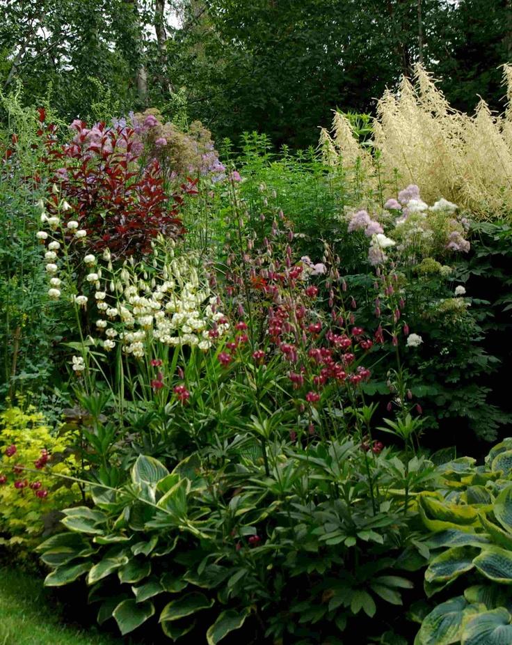 Perennial Border For The Garden Shade Garden Shade