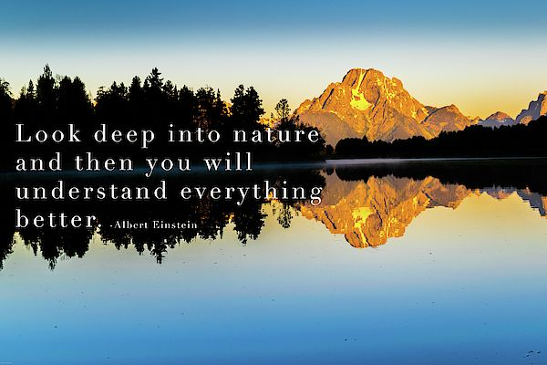 Nature Landscape Photography Quote By Albert Einstein Quotesinspirational Quoteart Naturequotes Natureart Naturebeauty N Nature Nature Art Nature Quotes