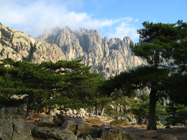 Favori 228 best Corsica - Island of beauty images on Pinterest   Corsica  NV47