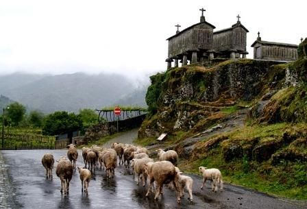 Soajo (Arcos de Valdevez) Portugal Ruralea: Turismo em espaço rural