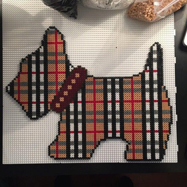 Dog hama perler beads by aslaugsvava