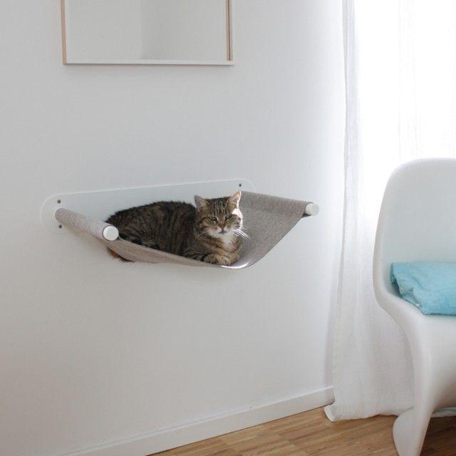 Die grundsätzliche Idee einer Hängematte hat uns so gefallen, dass wir uns entschlossen, dieses altbekannte Konzept an die Bedürfnisse von Katzen anzupassen.Unsere Katzen Hängematte kann, egal in welcher Höhe, an der Wand befestigt werden, was automatisch eine hohe Stabilität zur Folge hat. Die Matte schwingt dabei nicht, was Katzen das wichtige Gefühl von Sicherheit gibt - vielmehr ist es eine Liegematte. An der richtigen Stelle montiert bietet dieses Möbelstück Katzen einen gemütlichen…