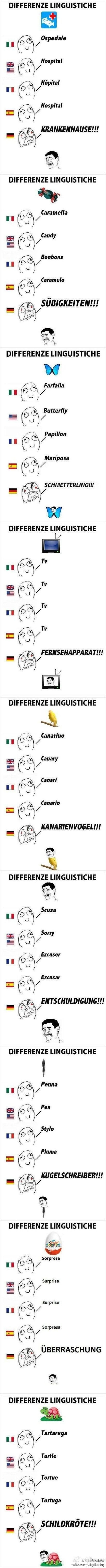 Different languages of memes. Love how the Germans have the angry face and all caps.