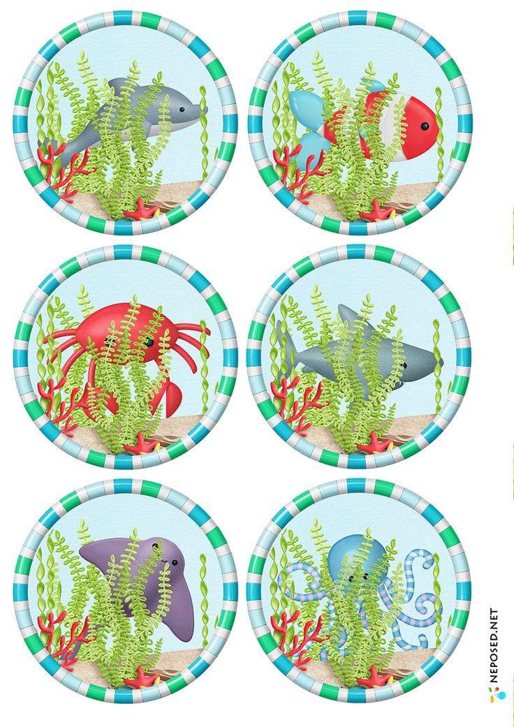 * Deze zeedieren kun je voor vele doeleinden gebruiken.... memorie, zoek iemand die, puzzelen.... 4-4