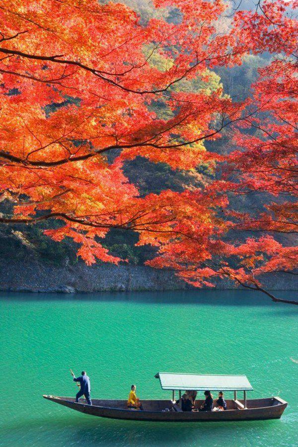 une belle vue japonaise                                                                                                                                                                                 Plus