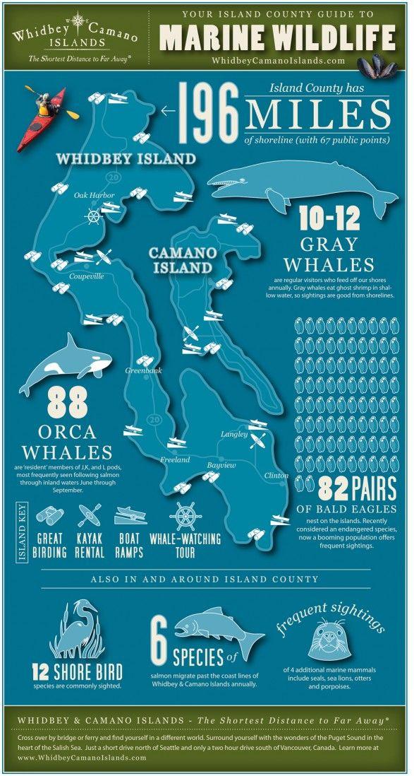 Pacific Northwest  Oregon Washington and Alaska National Geographics Driving Guides to America