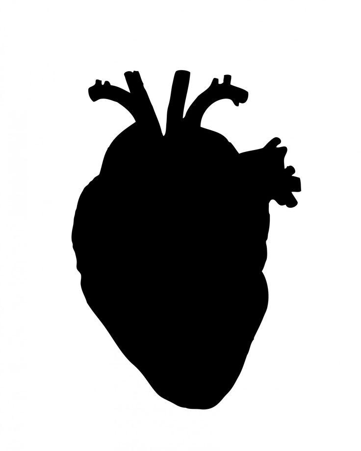 human-heart.jpg (1536×1920)