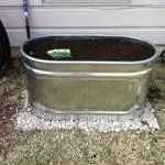 How To Build A Raised Bed in a Metal Trough | Apartment Therapy