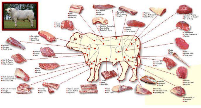 Pescoço, acém, braço, peito, lagarto e ossobuco: são cortes ideais para cozinhar na panela de pressão. Essas carnes, quando amolecidas, tornam-se muito saborosas e suculentas. Patinho, contrafilé, …
