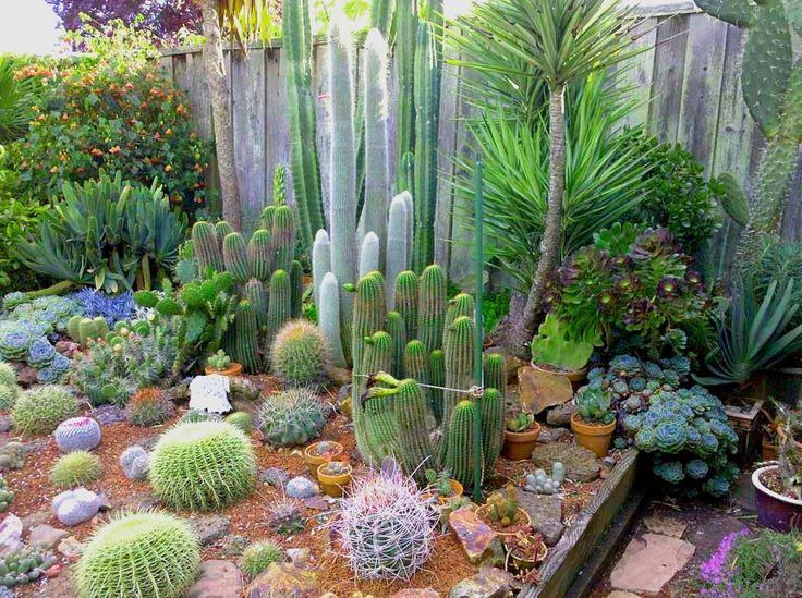 74 besten Garden Design Bilder auf Pinterest | Anbau von gemüse ...