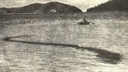 The Sea Monster of Hook Island - Unsolved Mysteries In The World