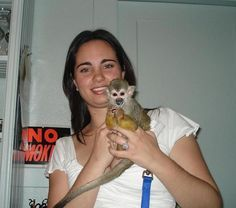 Pet Monkey care,how to care for a pet primate, monkeys as pets ...