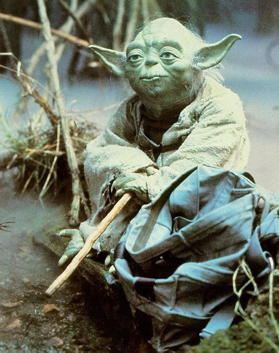 """I met him in a swamp down in Dagobah  Where it bubbles all the time like a giant carbonated soda  S-O-D-A, soda    I saw the little runt sitting there on a log  I asked him his name and in a raspy voice he said """"Yoda""""  Y-O-D-A, Yoda  Yo-yo-yo-yo Yoda"""