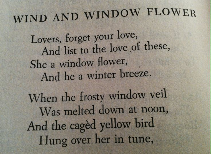 wind and window flower Robert frost poem link: wind and window flower lovers, forget your love, and listen to the love of these in this case, the wind and window flower meet at night.