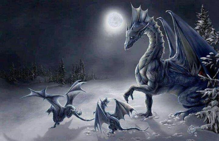 Dragons in winter scenery